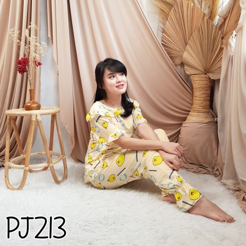 IMPORT PJ213 one set
